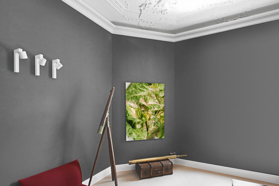 Food Art limited Edition Salad Dream by Thomas Sixt.