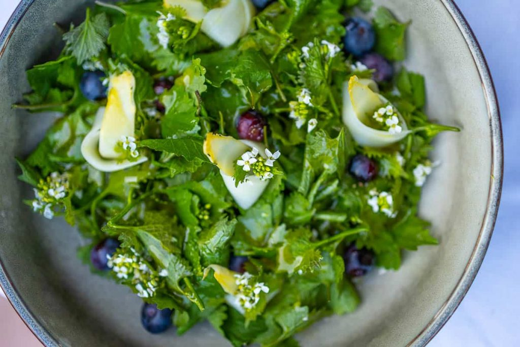 Leek salad with asparagus and blueberries