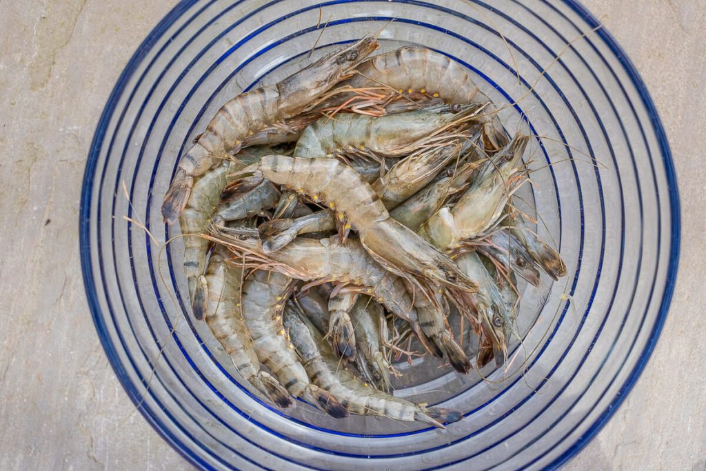 Prawns in the bowl