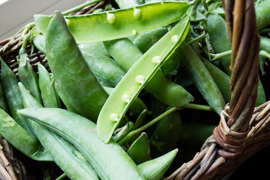Erbsen für Erbsengemüse frisch vom MArkt