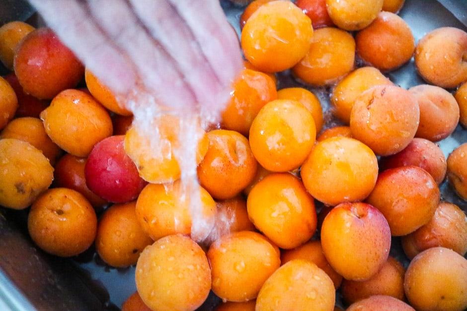 Waschen von Aprikosen
