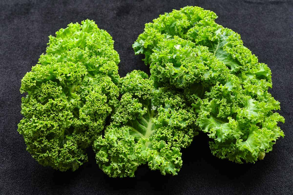 Grünkohl küchenfertig