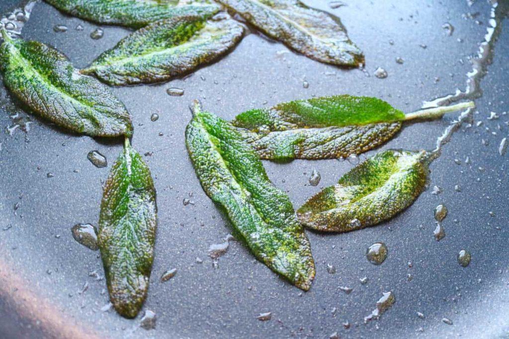 Ganze frische Salbeiblätter frittiert