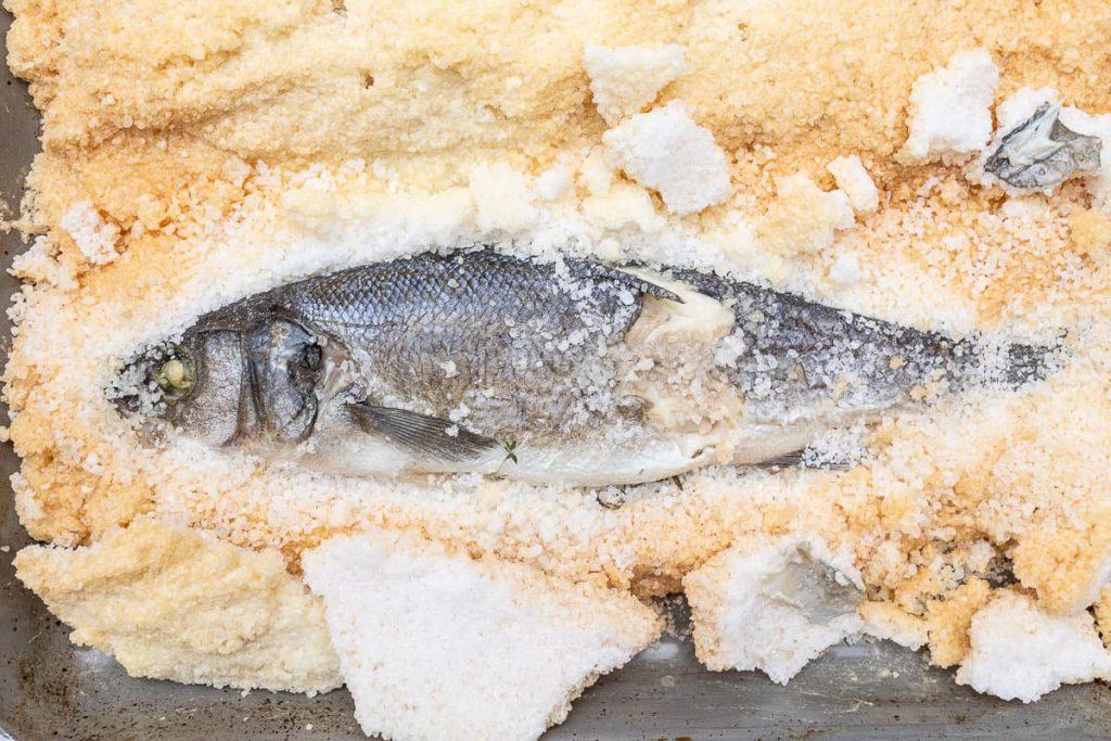 Fisch in Salzmantel offen