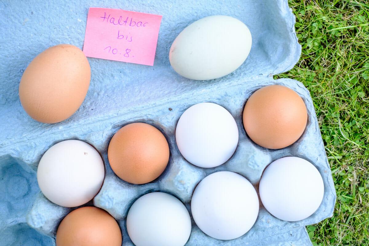 Frische Eier im Karton